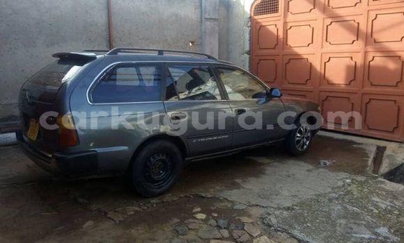 Acheter Occasion Voiture Toyota Corolla Noir à Mairie au Bujumbura
