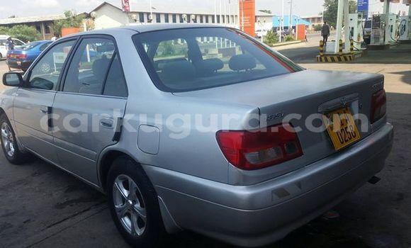Acheter Occasion Voiture Toyota Carina Gris à Mairie au Bujumbura
