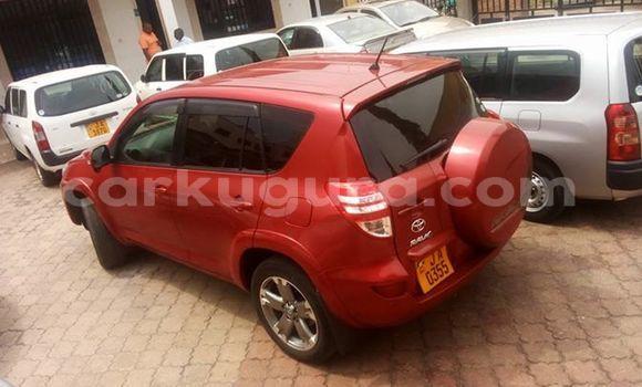 Acheter Occasion Voiture Toyota RAV4 Rouge à Mairie, Bujumbura