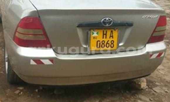 Acheter Occasion Voiture Toyota Corolla Gris à Mairie au Bujumbura