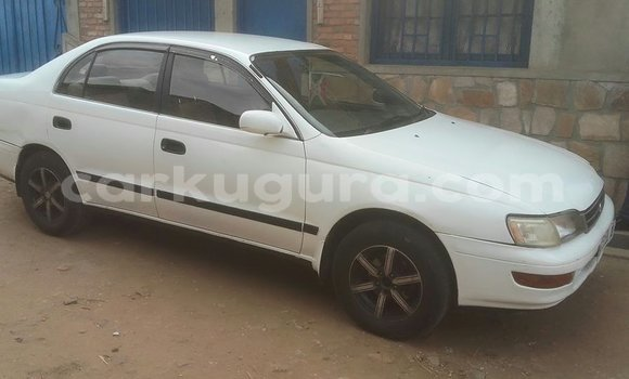 Acheter Occasion Voiture Toyota Corolla Blanc à Mairie au Bujumbura