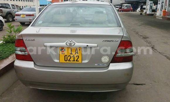 Acheter Occasion Voiture Toyota Corolla Gris à Muyinga au Burundi