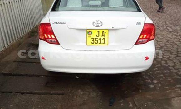 Acheter Occasion Voiture Toyota Axio Blanc à Bururi, Burundi