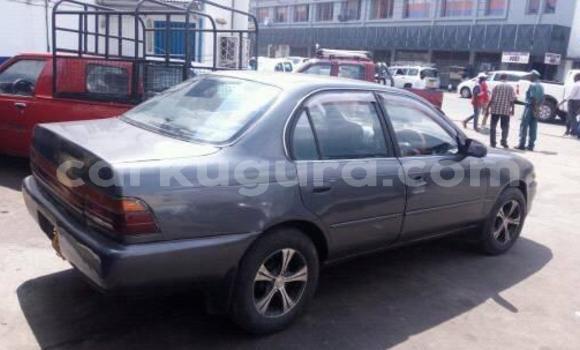 Acheter Occasions Voiture Toyota Corolla Autre à Bujumbura au Bujumbura