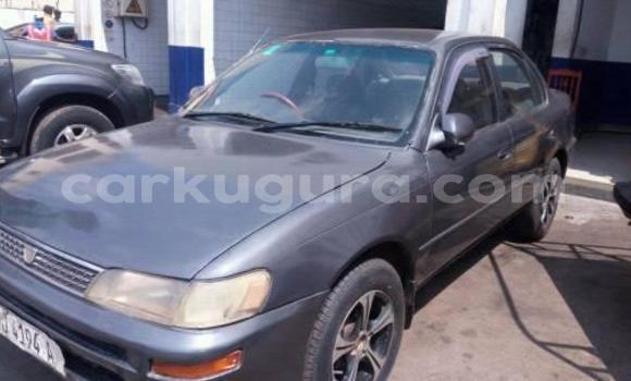 Acheter Occasions Voiture Toyota Corolla Gris à Bujumbura au Bujumbura