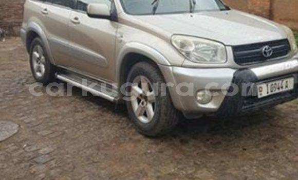 Acheter Occasions Voiture Toyota RAV4 Gris à Bujumbura au Bujumbura
