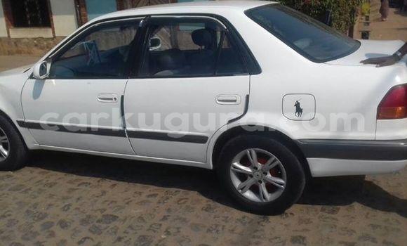 Acheter Occasion Voiture Toyota Corolla Blanc à Bujumbura, Bujumbura