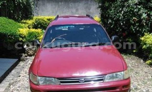 Buy Used Toyota Corolla Red Car in Bujumbura in Bujumbura