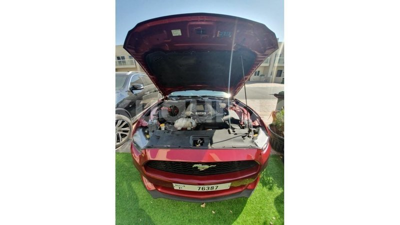 Big with watermark ford mustang bujumbura import dubai 5496