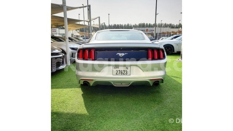 Big with watermark ford mustang bujumbura import dubai 5586